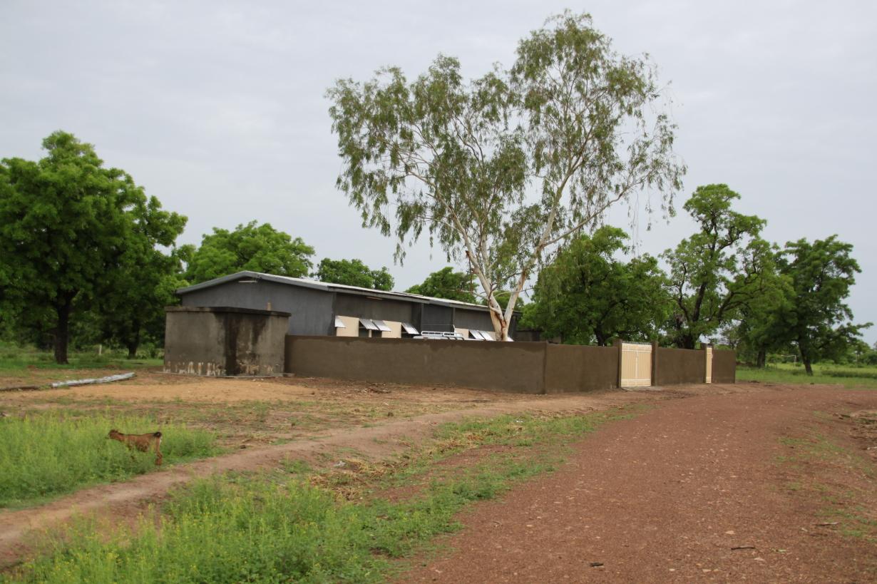 Reis Ghana Mei 2010 424