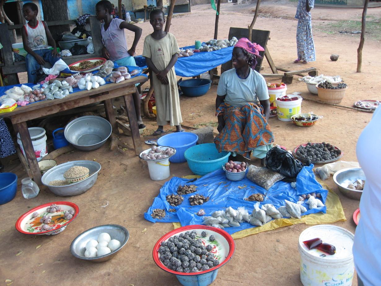 Bezoek Ghana mei 2010 261