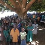 Bij gebrek aan klasruimte, krijgen de kinderen buiten les . Onder een mango-tree, dat wel ...  De meeste scholen in het gebied hebben 4 of 5 klaslokalen. Voor de honderden kinderen uit een dorp betekent het dat niet iedereen in de schoollokalen terecht kan. De kleinjes krijgen daarom dikwijls buiten les, op het schoolplein, in de schaduw van een boom. In het dorp kun je de kinderen dan rijtjes horen opdreunen: A, B, C enz.